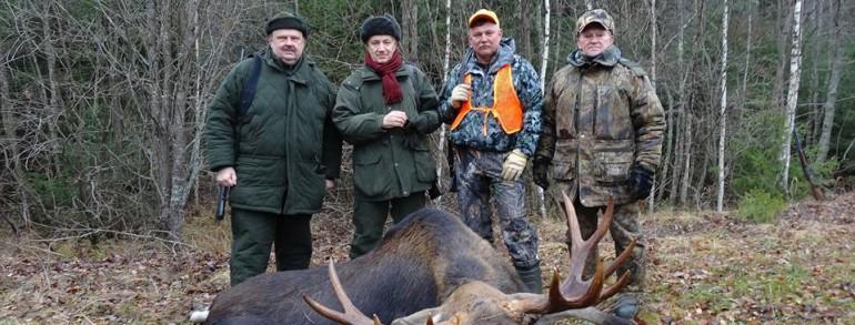 Загонная охота на лося